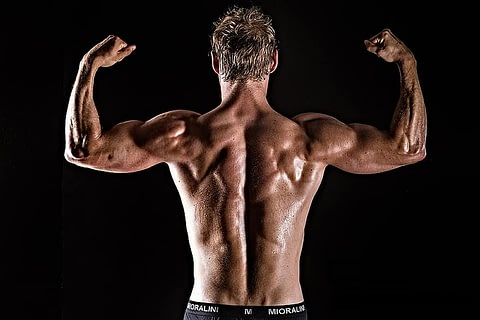 peptides for muscle gain